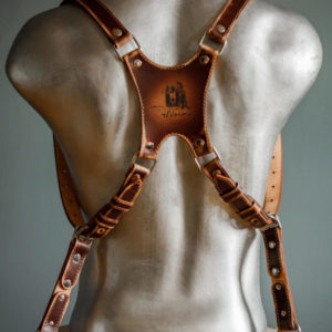 camera dual harness